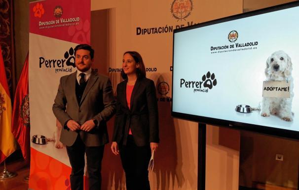 """La perrera provincial de Valladolid renueva su web para potenciar la adopción y acercarse al objetivo """"sacrificio cero"""""""