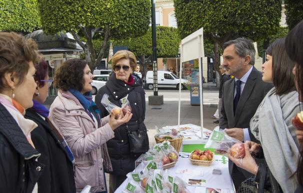 Diputación se suma a los actos del Día Mundial Contra el Cáncer organizados por la AECC