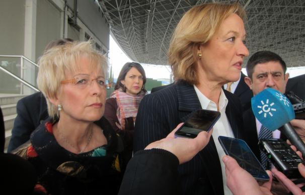 La Junta anuncia para mediados de febrero un segundo aforo de la presente campaña de aceituna