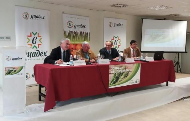 """Agricultura destaca la importancia """"social"""" del espárrago, un cultivo en expansión en Andalucía"""
