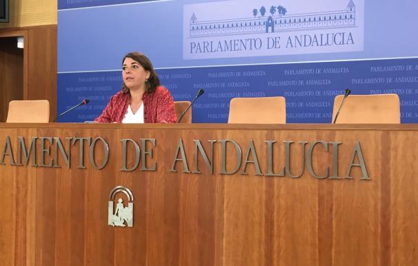"""IULV-CA propondrá a Susana Díaz un plan andaluz contra la """"explotación"""" de las camareras de piso"""