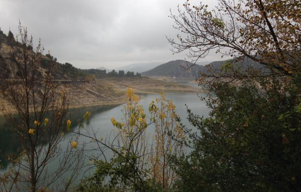 Los pantanos de la cuenca del Segura pierden un hectómetro cúbico en la última semana