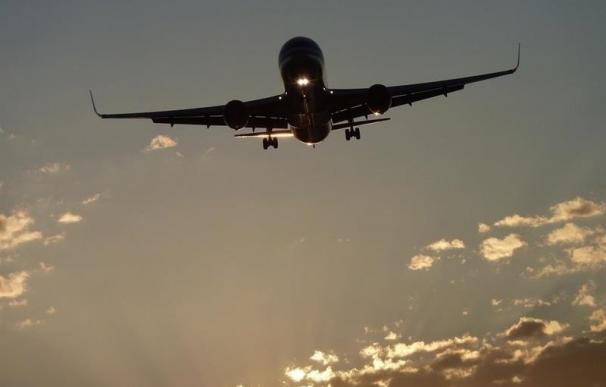 España promoverá ante la UE que los asistentes de personas con movilidad reducida viajen gratis en avión