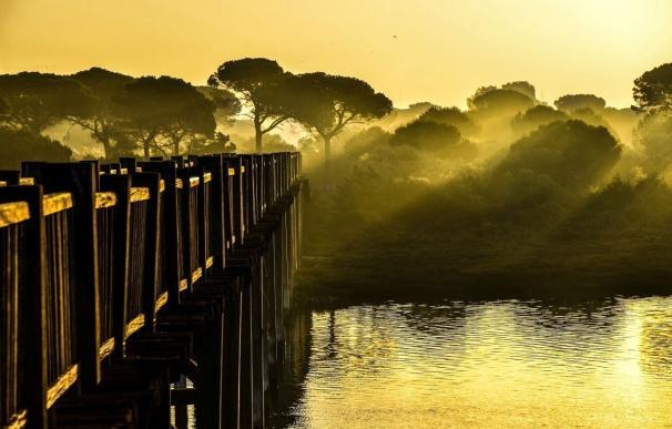 Una imagen del amanecer en Los Toruños, ganadora del concurso del Día de los Humedales
