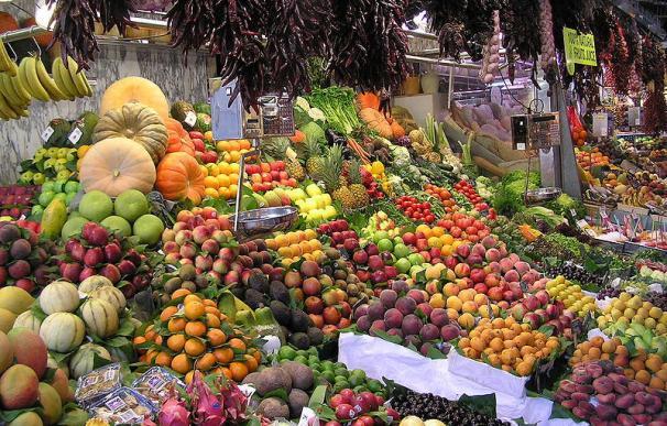 Las frutas, las verduras, el aceite de oliva, los cereales y el vino son las bases de la dieta mediterránea.