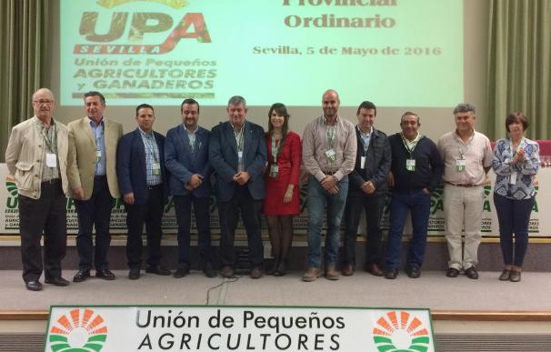UPA Sevilla elige por unanimidad a David Gil como nuevo secretario general en su 4º Congreso