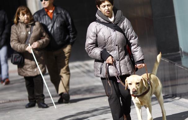 La robótica social ayudará a personas mayores y con discapacidad a tener mayor autonomía, según CENTAC