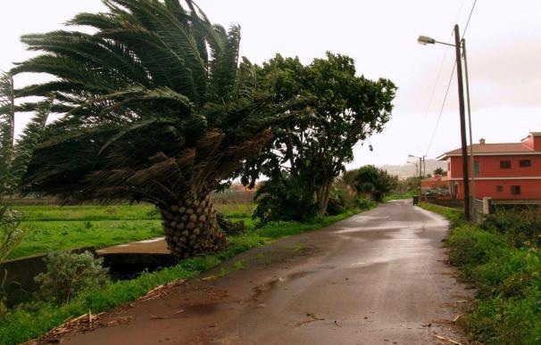 Cae una grúa de construcción sobre una vivienda en Tenerife y obliga a cortar la carretera