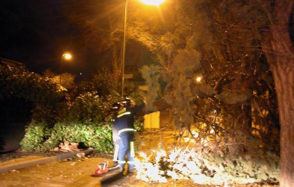 El viento obliga en Madrid a 155 salidas de los bomberos en apenas dos horas