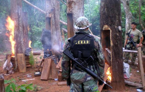 """La alianzas de las """"maras"""" y los carteles mexicanos fortalecen el contrabando de drogas"""