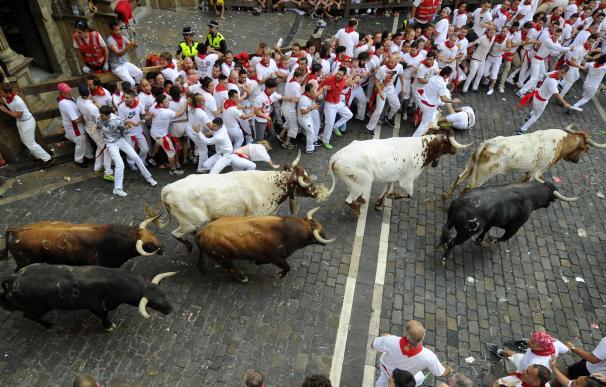 San Fermín 2015: Los toros de Jandilla en el encierro del martes 7 de julio