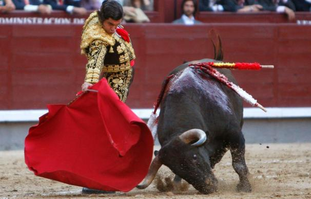 """Regresa """"Morante"""" a Burgos, en cuyos carteles están todos menos José Tomás"""