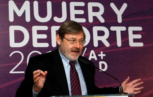 Lissavetzky admite que la actuación española ha sido gris