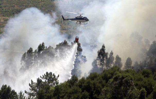 Un fuego en el municipio orensano de Taboadela obliga a cortar un tramo de autovía