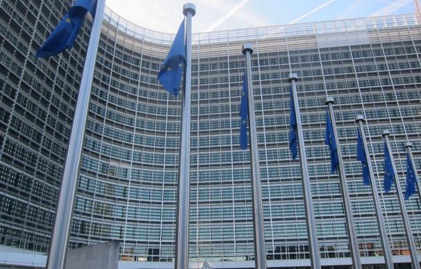 ONG ambientales europeas piden a la CE que asegure que todos los países superen el 27% de renovables en 2020