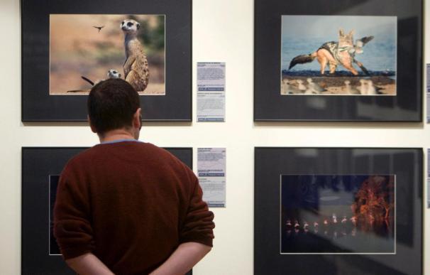 3 Españoles y 6 latinoamericanos, finalistas a los premios mundiales de foto