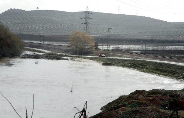 El río Guadalquivir ha inundado varias calles de Sevilla.