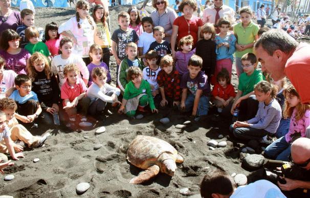 160 Niños devuelven al mar tortugas que pudieron recuperarse de sus heridas