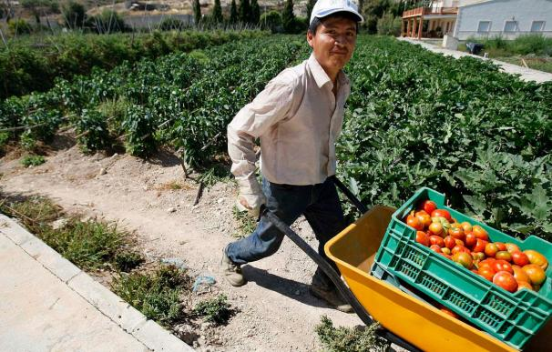 España, país de la Unión Europea con más superficie dedicada a la agricultura ecológica