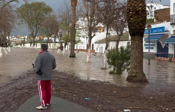 El nivel del río Guadalquivir baja más de un metro en Andújar (Jaén)