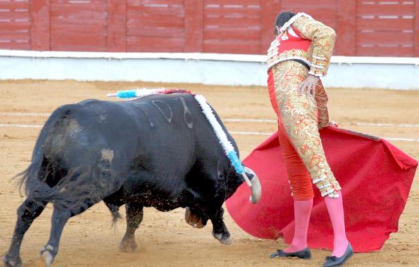 Municipios de España, Francia y Portugal se unen para defender los festejos