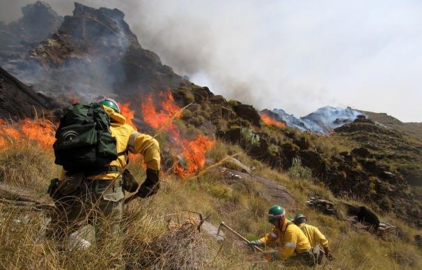 Gerencia y sindicatos de Amaya se reúnen este miércoles con la categoría de bombero forestal en el orden del día