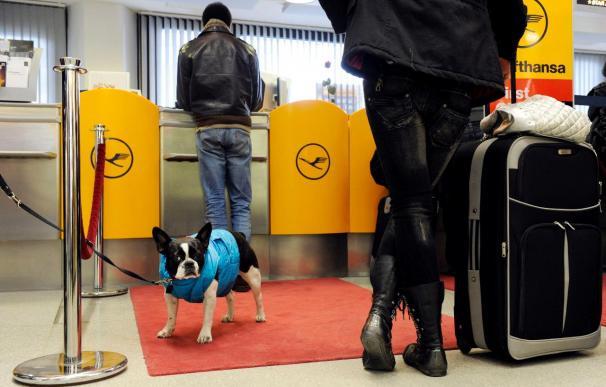 Los pilotos comienzan en Alemania la mayor huelga en la historia de Lufthansa
