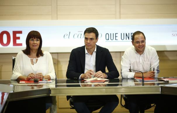 La dirección de Pedro Sánchez copa diez cabeceras de lista para las generales, entre ellas César Luena por La Rioja