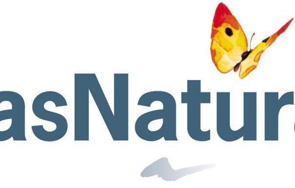 Gas Natural firma un crédito de 4.000 millones con 18 entidades financieras