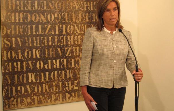 Mato pide al Gobierno que recopile pruebas para que Bildu deje las instituciones