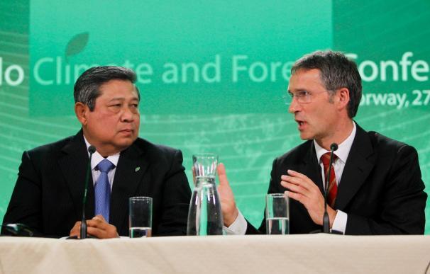 Los países ricos elevan los fondos contra la deforestación a 4.000 millones de dólares