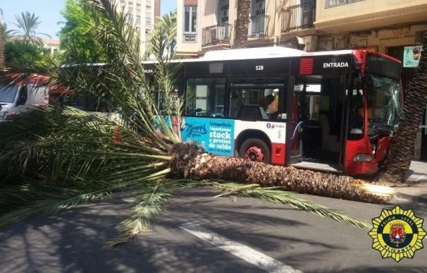 Diez heridos al chocar un autobús de la línea 9 contra una palmera en Calderón de la Barca