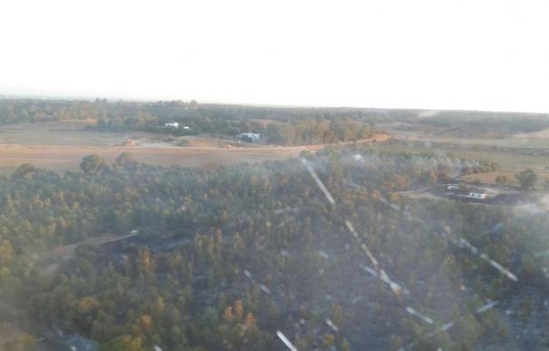 El Infoca da por controlado el incendio forestal declarado en La Puebla del Río