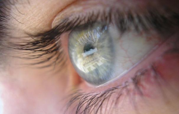 Cerca de 5 millones de españoles están en riesgo de padecer ceguera por enfermedades de la retina