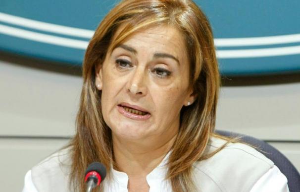 Silva (PSOE) dice que el juicio contra Matas muestra que el PP no es un partido de fiar