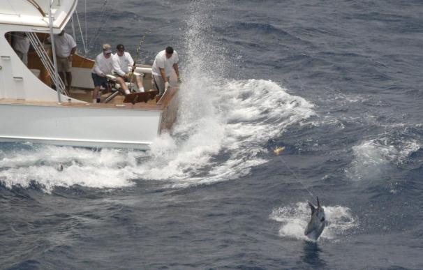 El equipo de España gana el Torneo de Pesca de la Aguja 'Ernest Hemingway' en Cuba