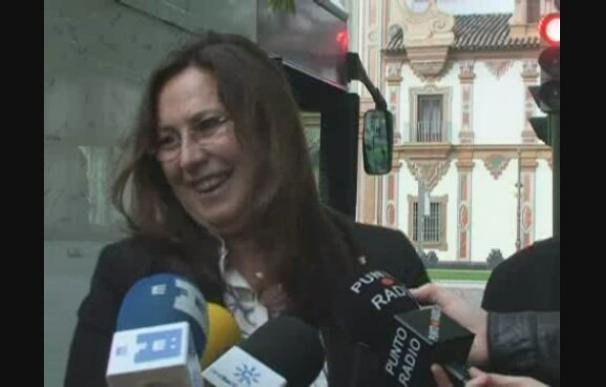 Córdoba se libra de los malos olores gracias a los pañales para caballos