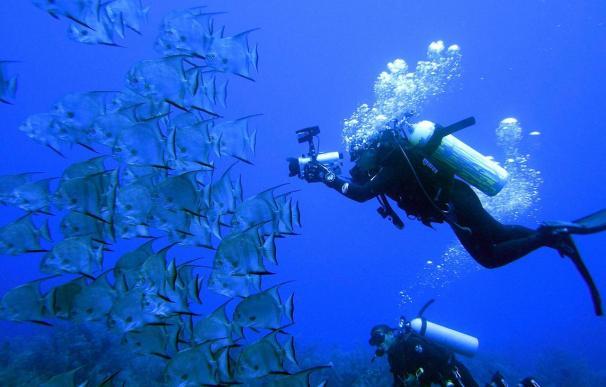 El CSIC alerta de que los océanos están amenazados por las emisiones de CO2