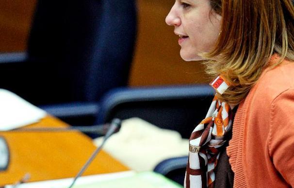 Sánchez de León dice que se piensa en renovar el TC cuando se prevé una sentencia no deseada