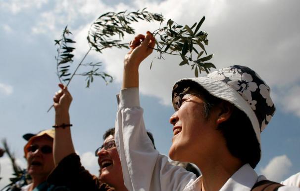 Cristianos de todo el mundo descienden el Monte de los Olivos agitando palmas