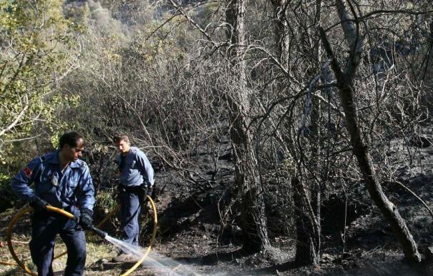 Los Bomberos controlan el fuego forestal de Benifallet que ha quemado 30 hectáreas