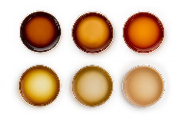 Científicos desarrollan un código molecular para materiales similares a la melanina