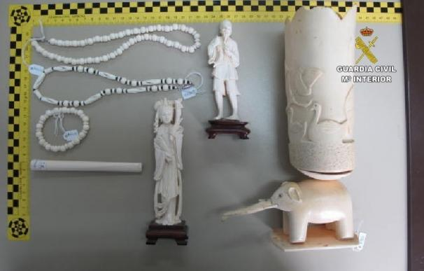 El Seprona incauta siete piezas de marfil de elefante que estaban a la venta en Menorca