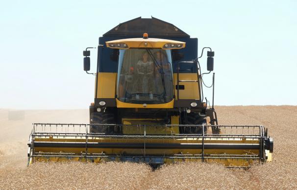 La Junta cifra en 2,6 millones de toneladas la cosecha de cereal, un 59% menos respecto a la media del último lustro