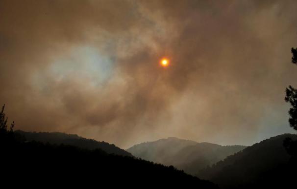 """Combaten un incendio forestal de """"cientos de hectáreas"""" en Ibiza"""