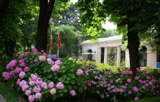 El Jardín Botánico dedica una exposición a la naturaleza como objeto de arte