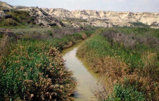 Israel estudia prohibir los bautizos en el Jordán por el alto nivel de contaminación