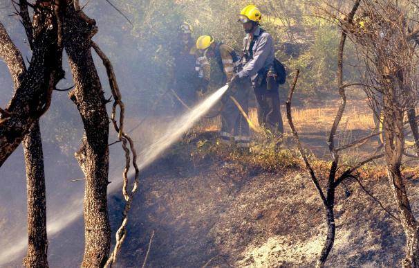 Los bomberos trabajan para extinguir un incendio declarado en Girona