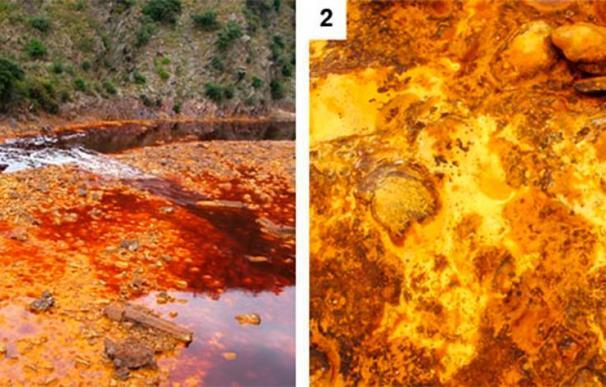Un experimento con bacterias en el Río Tinto confirman la posibilidad de vida en Marte