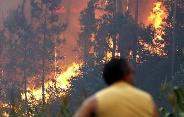 Once incendios activos afectan al norte de Portugal